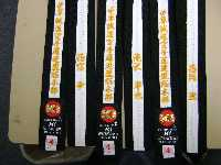 Rank line lapel