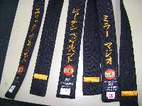 shitoryu traditional pants