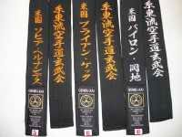 Japanese belt Bar stripe