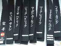 Special instruction Gojuryu lapel