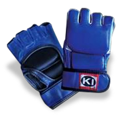 Mixed Martial Arts Gloves (Blue)